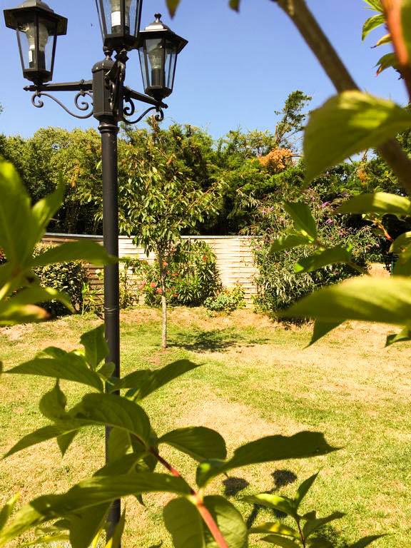 Jardin avec éclairage extérieur